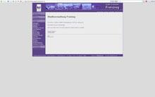 Layout der Freisinger Webseiten